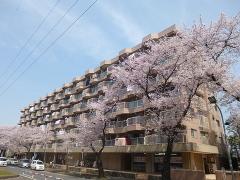 松戸市六高台4丁目の物件画像