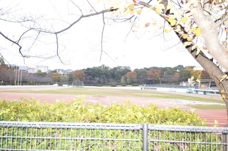 松戸市立運動公園