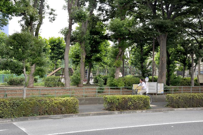 水元中央公園