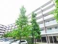 東京都三鷹市牟礼2丁目の物件画像