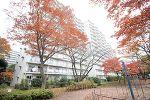 千葉県松戸市新松戸3丁目の物件画像