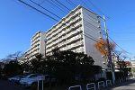 千葉県松戸市新松戸4丁目の物件画像