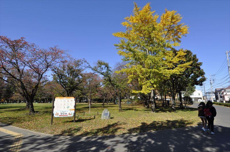 元淵江公園