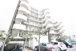 千葉県松戸市常盤平3丁目の物件画像