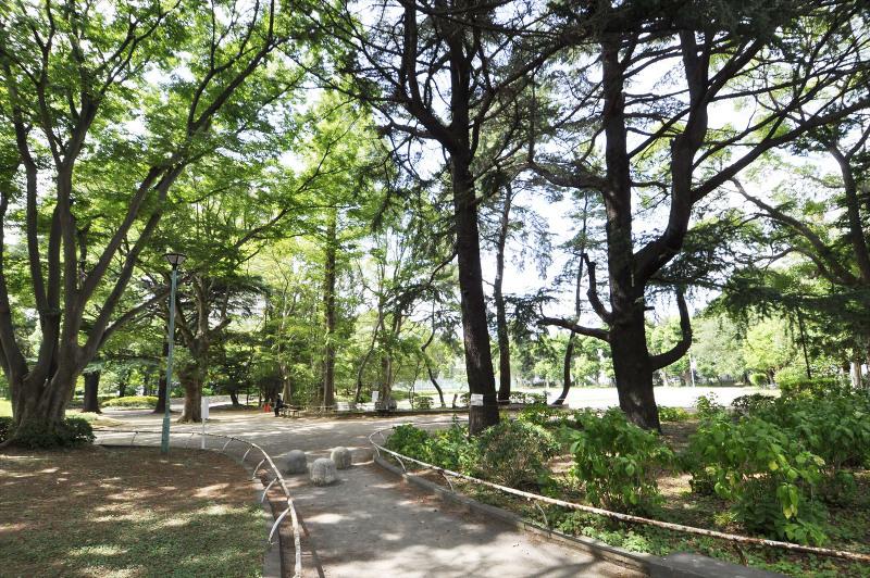中央公園庭球場