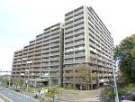 千葉県船橋市行田2丁目の物件画像
