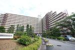 千葉県松戸市日暮7丁目の物件画像
