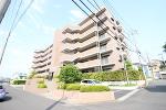 千葉県松戸市新松戸東の物件画像