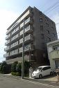 横浜市都筑区桜並木の画像