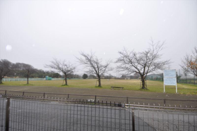 八潮南公園