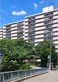 神奈川県横浜市旭区鶴ケ峰2丁目の物件画像