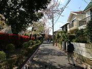 世田谷区粕谷3丁目の画像