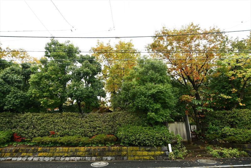 東淵江庭園