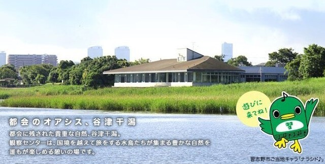 谷津干潟自然観察センター 1340m