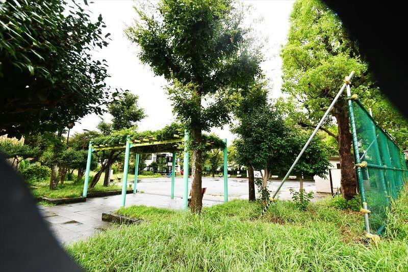 東水元みどり公園